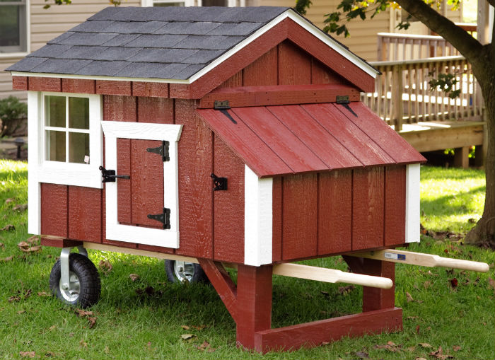 chicken3x4-A34dt-redwhiteblack.html-130-3x4 A34 A-Frame w_dura-temp siding- Lifestyle Photo-2-700w.jpg